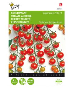 Cherry tomato supersweet